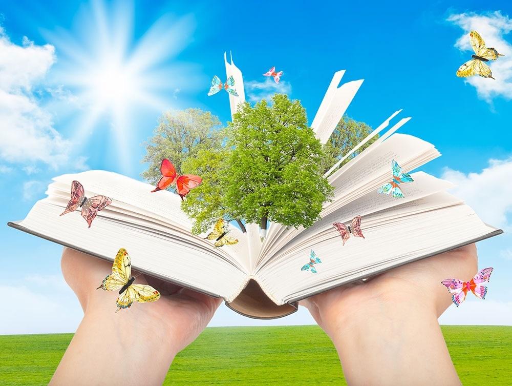 Книга открывает мир картинки